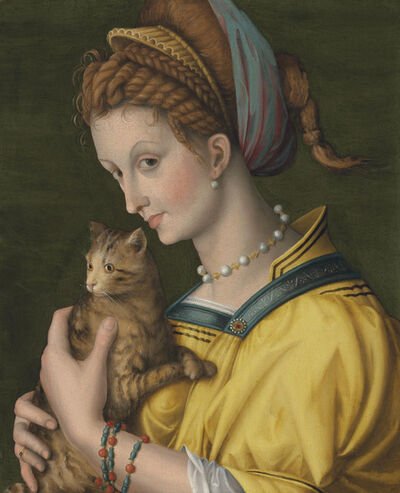 Antonio D'Ubertino Verdi (called Bachiacca), 'Portrait of a young lady holding a cat'