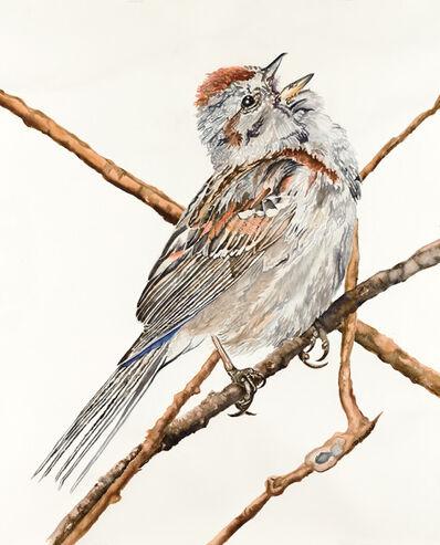 Carol Dawson, 'Tree Sparrow', 2016