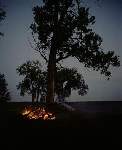 Gregory Halpern, 'Fire and Tree, Omaha, NE', 2005-2018