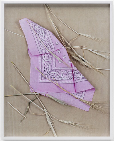 Annette Kelm, 'Paisley and Wheat Pink', 2013