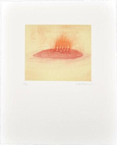 Leiko Ikemura, 'La isla enrojada', 2012