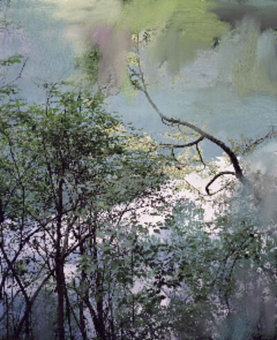 Sandra Kantanen, 'Untitled (Lake 7)', 2011