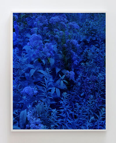 Tealia Ellis Ritter, 'Reenactment 309 (Impossible Blue) ', 2017