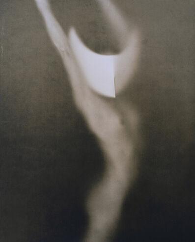 John Casado, 'Untitled 20247 - lith silver gelatin print', 2001