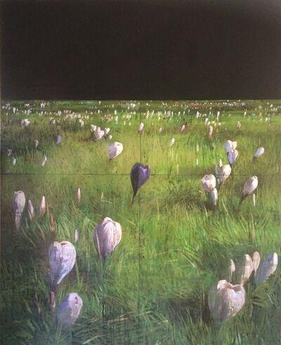 François Bard, 'Les crocus', 2003