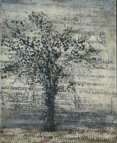 Alicia Rothman, 'Tree', 2005