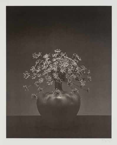 Robert Mapplethorpe, 'Queen Anne's Lace in vase'