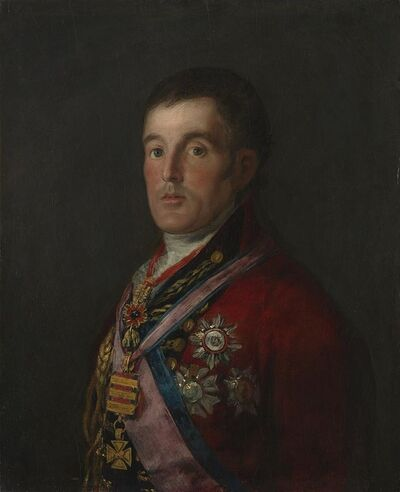 Francisco de Goya, 'The Duke of Wellington', 1812-1814