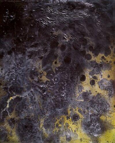 Andrew Birk, 'Rotten Banana', 2015