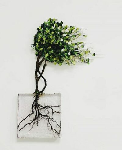 Annalù Boeretto, 'Fukinagashi GREEN', ca. 2019