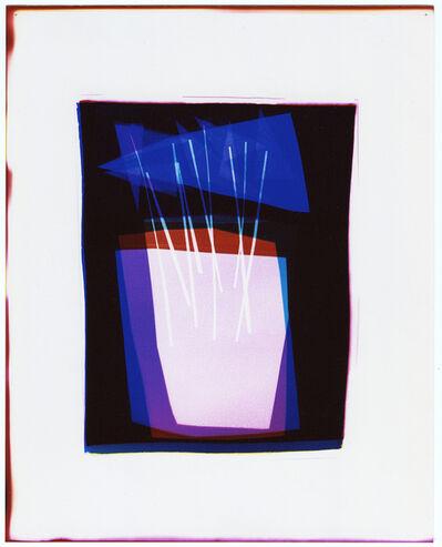 Liz Nielsen, 'Pendant Plant', 2020