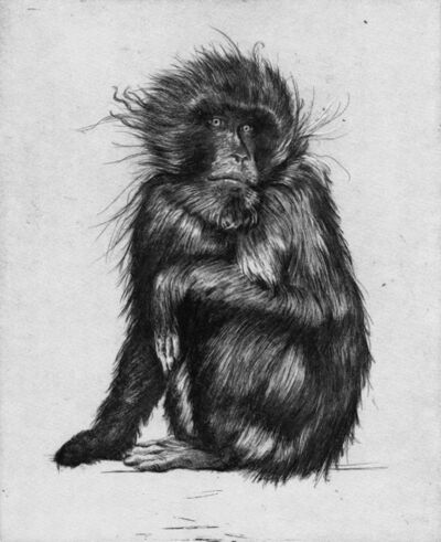 Hugo Wilson, 'Goodbye to Monkeys 1-4 Unique Proof Set', 2017