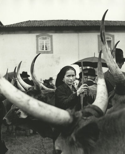 Ormond Gigli, 'Girl with Oxen, Portugal', 1952