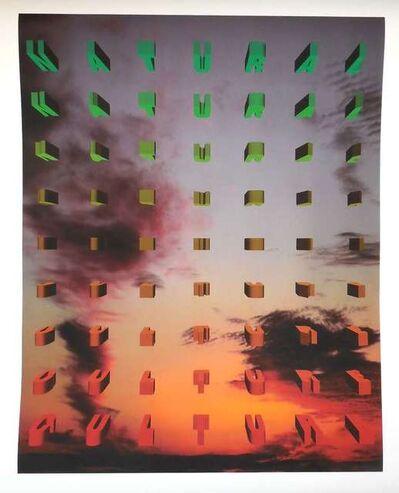 Nancy Dwyer, 'Natural Culture large color iris print', 1990-1999