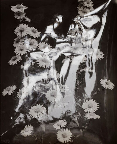 Sebastian Riemer, 'Flash Flowers', 2016