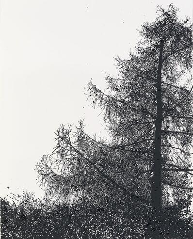 Sue Arrowsmith, 'Gonna Turn to Dust', 2015