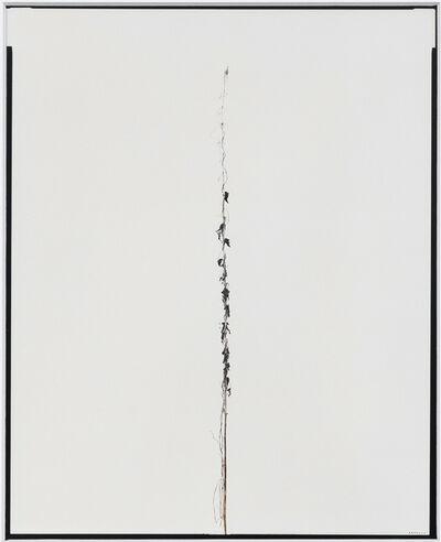 Eric Poitevin, 'Sans titre (Plantes sèches) ', 2014-2020