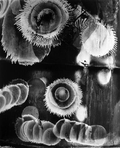 Brett Weston, 'Paint, California', 1985