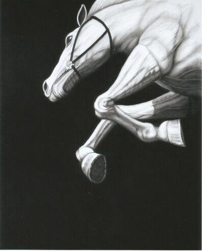 Joseph Piccillo, 'Untitled 10', 2014