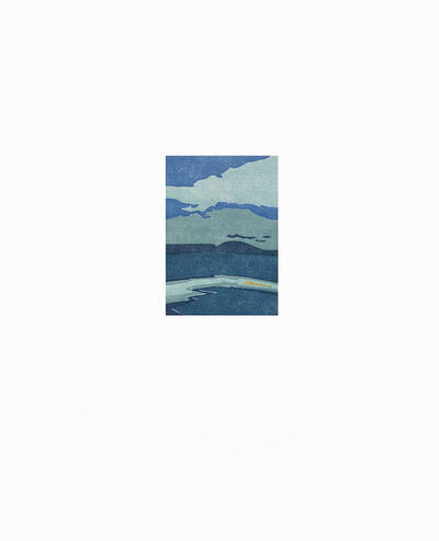 Suzanne Caporael, 'Silo Ridge (hazard)', 2016