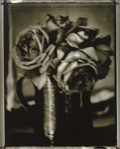 Sarah Moon, 'Roses', 1997