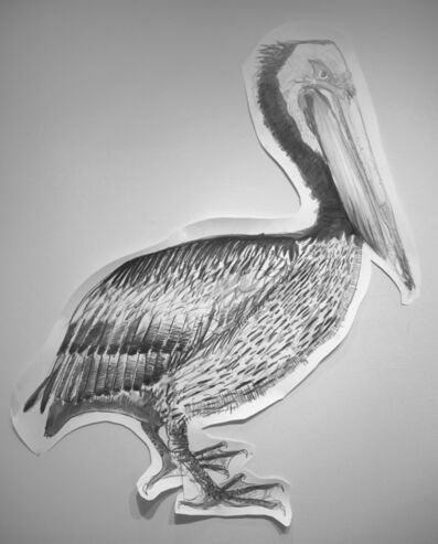 Jules Buck Jones, 'Brown Pelican', 2019