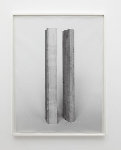 Becky Beasley, 'Elaborations (Extension No. 1)', 2013