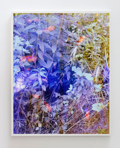 Tealia Ellis Ritter, 'Reenactment 231 (Blue)', 2016