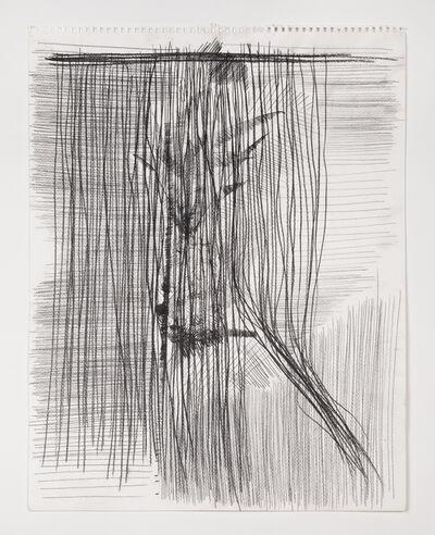 Derek Liddington, 'Plant study behind closed window and shut blinds', 2015