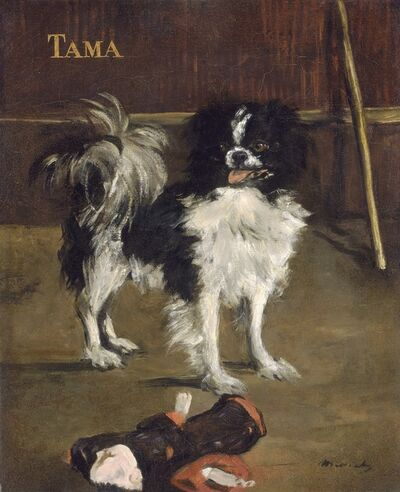 Édouard Manet, 'Tama, the Japanese Dog', ca. 1875