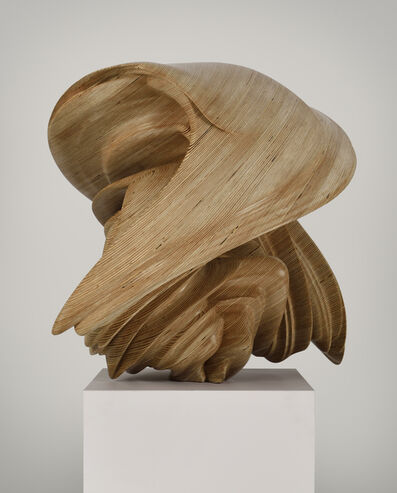 Tony Cragg, 'Willow-70', 2014
