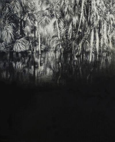 Jaco van Schalkwyk, 'Therapy for Narcissus', 2019