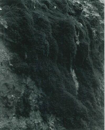 Balthasar Burkhard, 'La Source 01, 02, 03', 1988