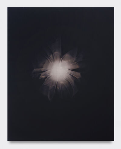 Chris Duncan, 'Sun Made Moon 6 Month Exposure (Dark Brown) ', 2019
