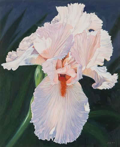 Pat Bailey, 'Pink Iris', 1999