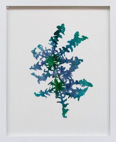 Hannah Cole, 'Double Dandelion', 2018