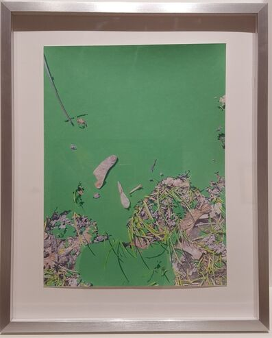 Marina Bindich, 'Green', 2017