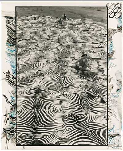 Peter Beard, 'Zebra Carpet, Lariak Estate', 1960