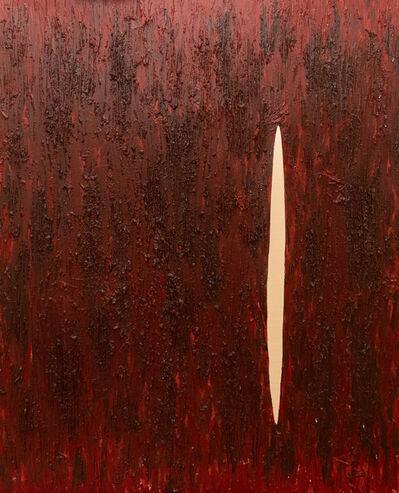 Laura Pretto Vargas, 'Scars II', 2017
