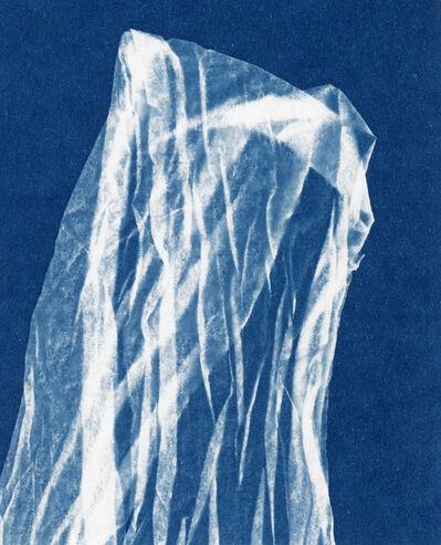 Alyson Belcher, 'Treading Light no. 18', 2020