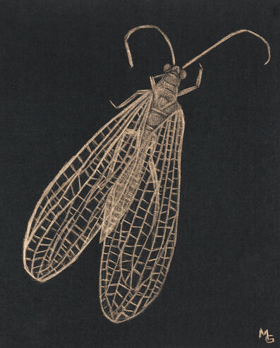Margot Glass, 'Lacewing', 2020