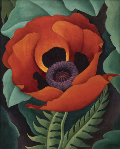 Robert Gribbroek, 'Poppy', 1937