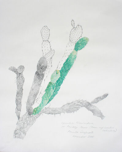 Paula Sengupta, 'The garden of unreason - The cactus drawing', 2018