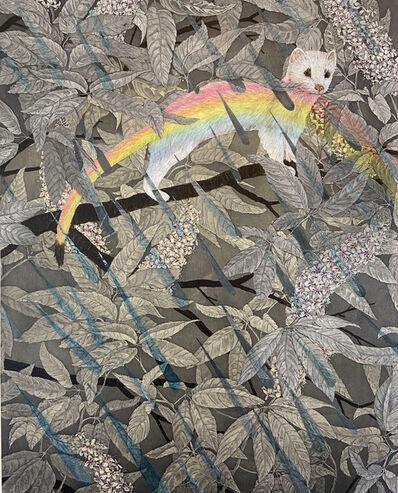 Julia Lucey, 'Rainbow Weasel', 2020
