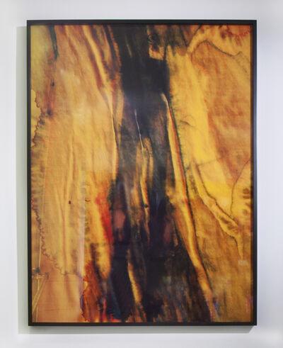 Sara Greenberger Rafferty, 'Legs III', 2011