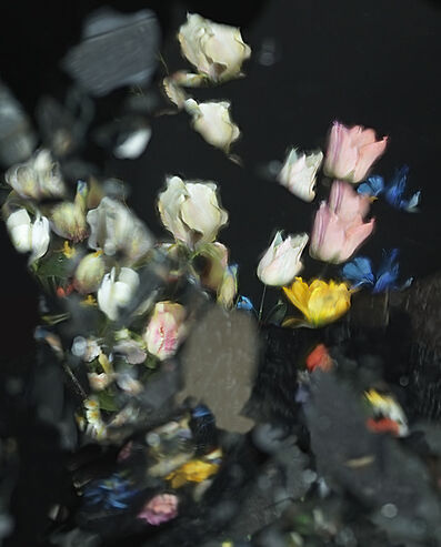 Ori Gersht, 'On Reflection, Virtual J01', 2014
