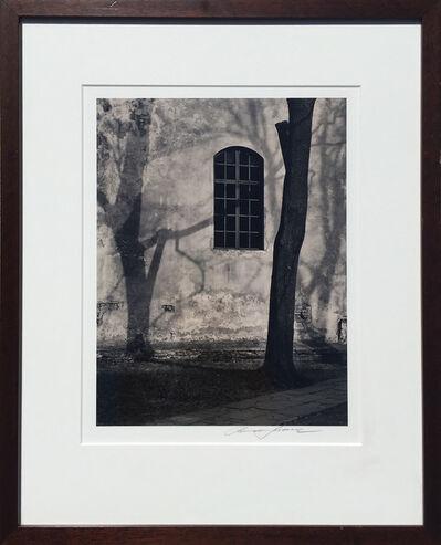 Roman Loranc, 'Shadow Play', 2006
