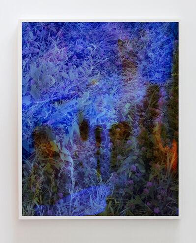 Tealia Ellis Ritter, 'Reenactment 169 (Blue)', 2015
