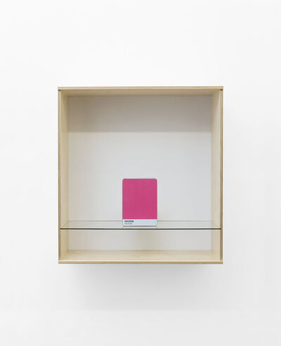 Haim Steinbach, 'Untitled (Pantone 18-2120)', 2016