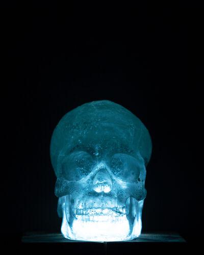 Yoshitaka Iwamoto, 'Skull', 2017